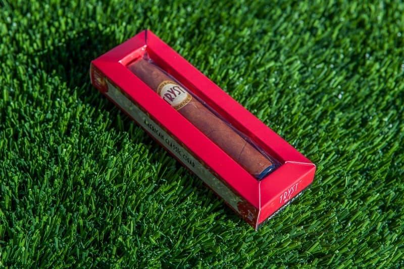 Tryst Robusto E-Cigar
